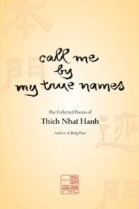 Call Me by My True Names Book Cover