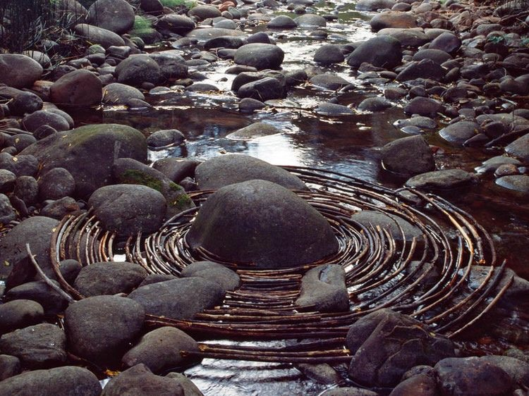 Andy Goldsworthy image